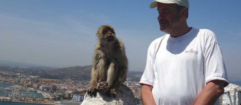 apa och man med utsikt över en stad