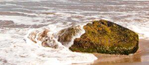 sten som översköljs av vatten på en strand