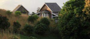 hus nära träd och grönområde