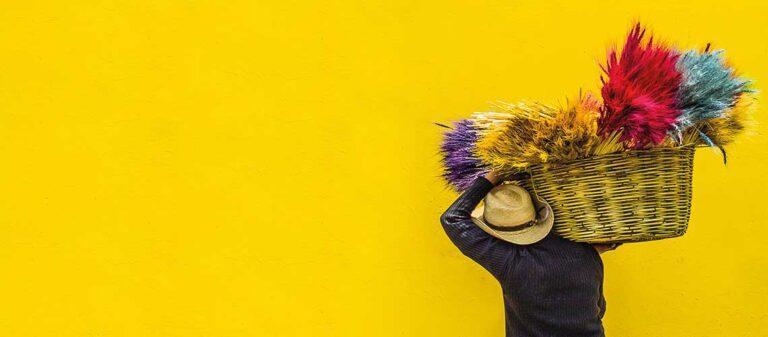person i mörk tröja och ljus hatt bär olikfärgade fjädrar i en korg på axeln