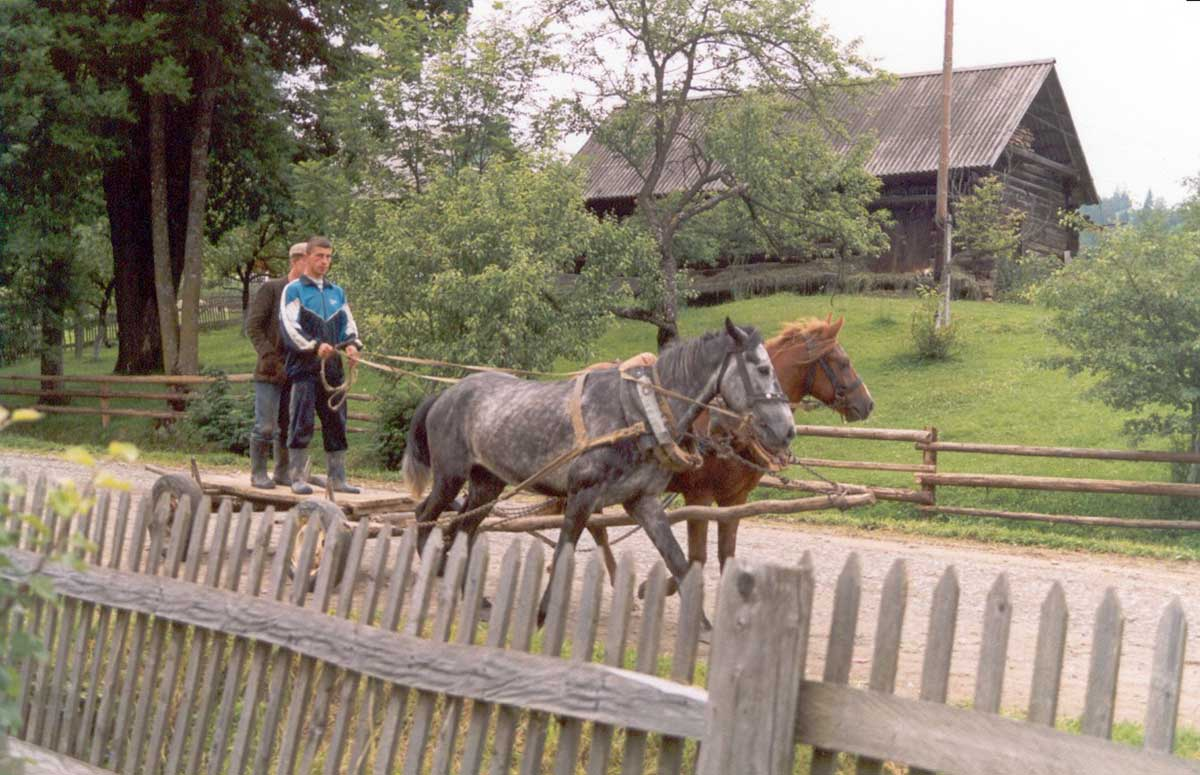 två män står upp på en vagn som dras av två hästar