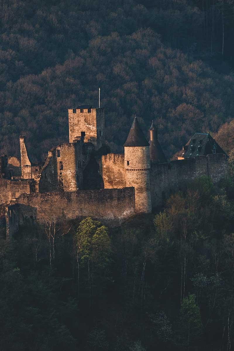 slott omgivet av skog