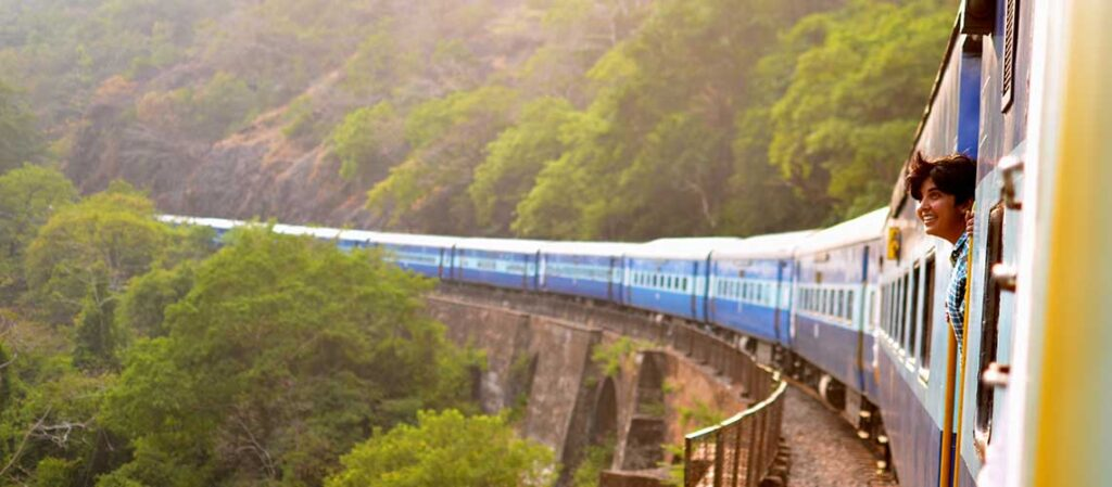 tåg i rörelse vid skog