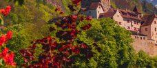 buskar nedanför ett slott
